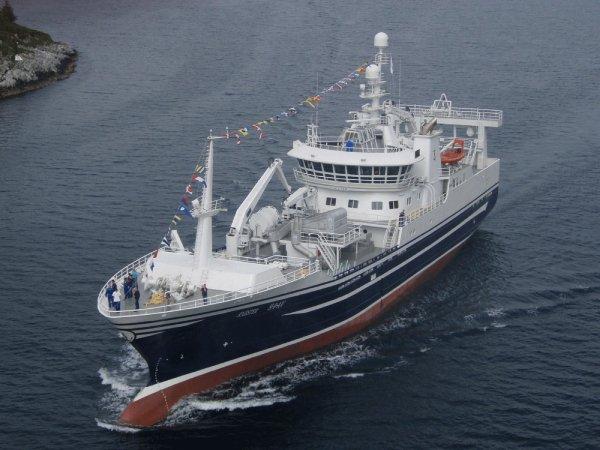 norway iceland mackerel landing