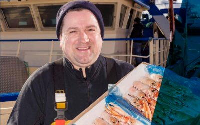 Working group sets out improvements for Scottish langoustine sector