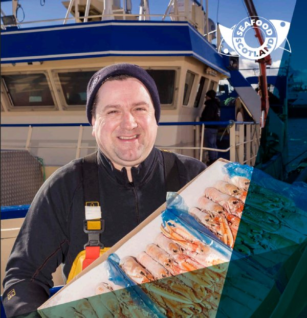 A new report published by the Scottish Nephrops Working Group report highlights the value of the langoustine export market to the industry