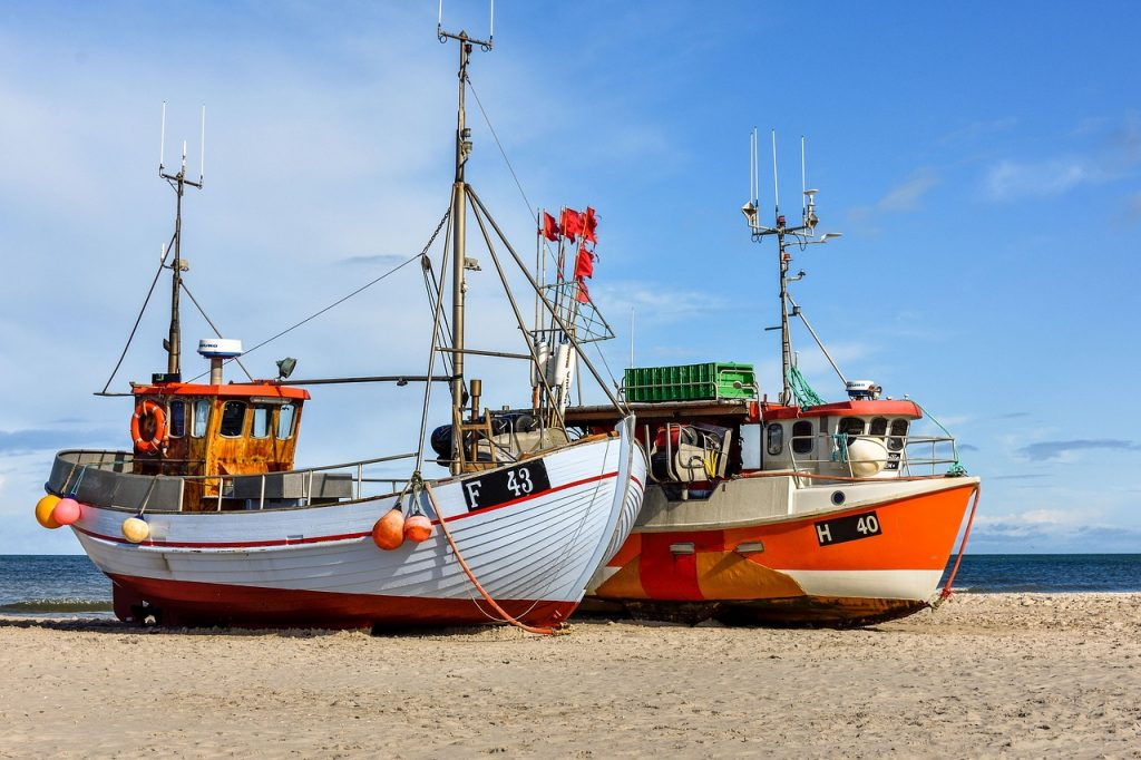 Europêche stresses that Baltic Sea fishermen are in troubled waters following the announcement of fishing quotas for ten main stocks