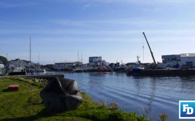 Decommissioning and tie-ups will not restore Irish fishing industry
