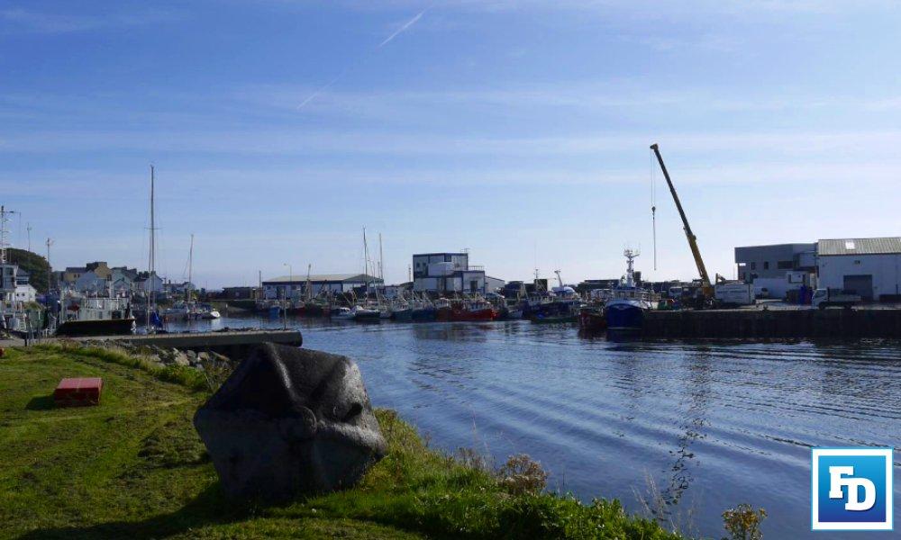 Decommissioning and tie-ups will not restore the Irish fishing industry, says Sinn Féin Spokesperson on Fisheries Pádraig Mac Lochlainn