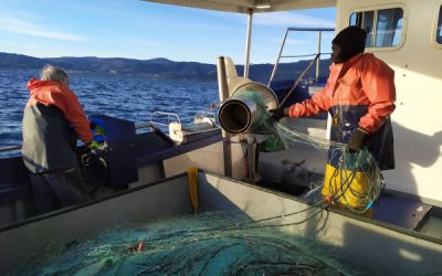 CABFishMan consortium releases new review of small-scale fisheries