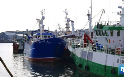 Task Force Report recommends decommissioning 26% of Irish Whitefish Fleet