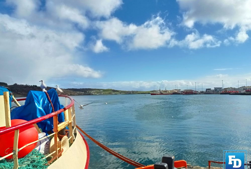 Experiences of non-EEA workers in the Irish Fishing Industry Report