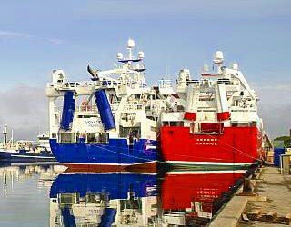 EAPO produces EU pelagic industry position paper for 2022