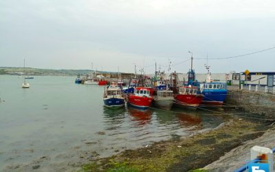 Seafood Sector Task Force Report recommends a VPCS for inshore fleet