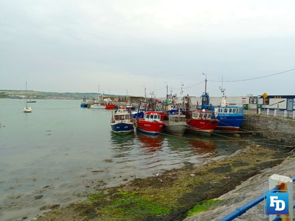 The Seafood Sector Task Force Report has recommended a Voluntary Permanent Cessation Scheme (VPCS) for the Irish inshore fleet