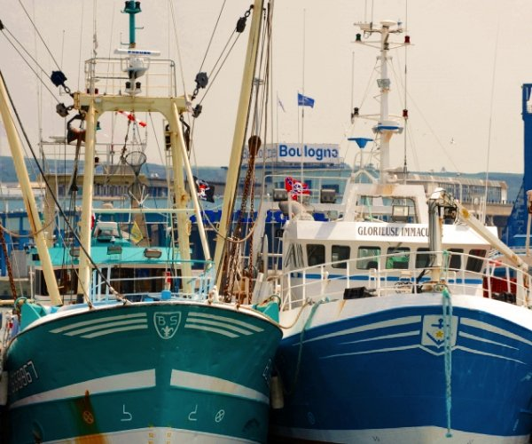 The Comite des Peches has hit out at the UK policy on issuing fishing licences to French vessels
