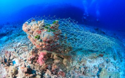 Marine Scotland announces funding to tackle marine litter